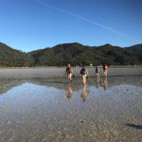 Crossing the Awaroa Inlet at low tide   Janet Oldham