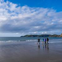 Walkers enjoy a lovely afternoon beach walk on Waiheke | Terra and Tide