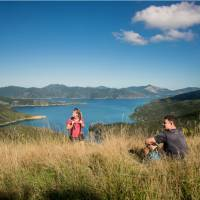 Time to stop and simply admire the view over Queen Charlotte | MarlboroughNZ