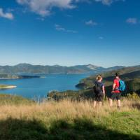 Taking in the amazing views from the top of the Queen Charlotte Track | MarlboroughNZ