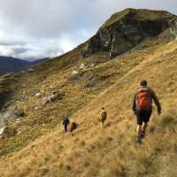 Heading downhill through the Ben Lomond Station backcountry |  <i>Janet Oldham</i>