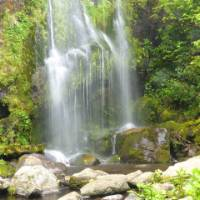 The perfect place to stop and take some photos, one of the Flea Bay Waterfalls | Janet Oldham