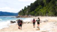 Enjoying a beach walk at Goat Bay, one of the first sections of the Abel Tasman Track |  <i>Natalie Tambolash</i>