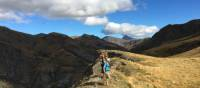 Up on the ridgeline in Ben Lomond Station - dark and light - look left, or right? | Janet Oldham