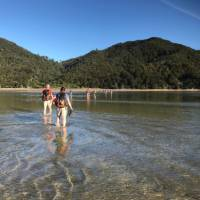 Low tide makes crossing easier at the Awaroa Inlet | Janet Oldham