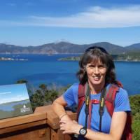 Perfect photo opportunity at the Motuara Island Lookout   Kaye Wilson
