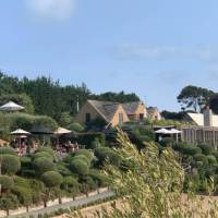 Why not stop for a lunch and a glass of wine at one of the famous Waiheke vineyards | Terra and Tide