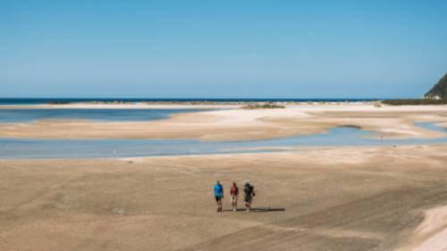 Walking Awaroa Beach at low tide