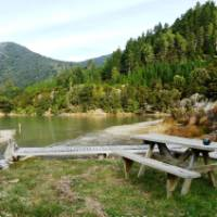 Not a bad place to enjoy a cup of tea - the beautiful forest surrounds of Nydia Bay   Janet Oldham