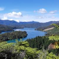 Picture postcard scenery along the Queen Charlotte - a photographer's dream   Kaye Wilson