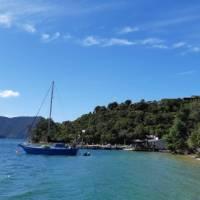 Punga Cove Jetty and Beachfront Cafe   Kaye Wilson