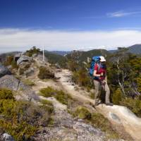 Traversing Skyline Ridge   Janet Oldham