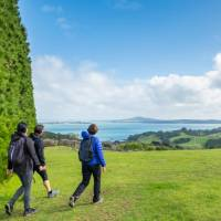 Walking the Te Ara Hura with Rangitoto views in the distance | Terra and Tide