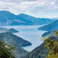 Stunning views greet you from the Nydia Track   MarlboroughNZ