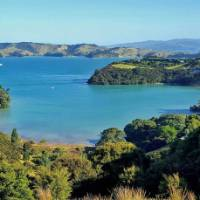 Stunnings views greet you from all corners of Waiheke   Terra and Tide