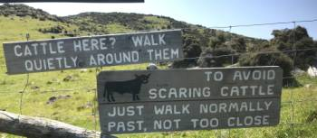 Don't walk too close - a sign warning about local wildlife on the Banks Peninsula | Janet Oldham